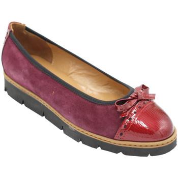 Chaussures Femme Ballerines / babies Angela Calzature ANSANGC540bor nero