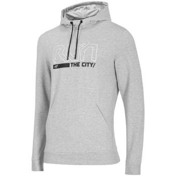 Vêtements Homme Sweats 4F BLM017 Gris