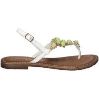 Chaussures Femme Tongs Gardini 1108754 Blanc