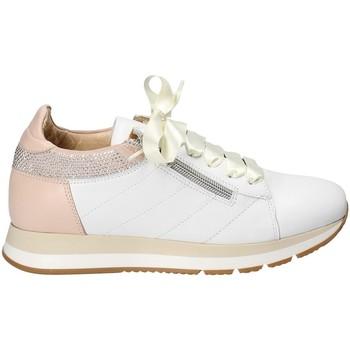 Chaussures Femme Baskets basses Exton E18 Blanc