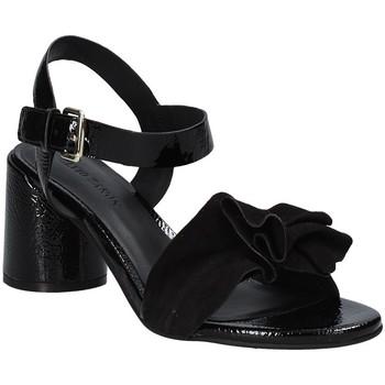 Chaussures Femme Sandales et Nu-pieds Elvio Zanon EJ5605P.L Noir