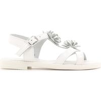 Chaussures Enfant Sandales et Nu-pieds Lulu LT080056L Blanc