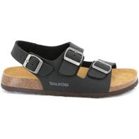 Chaussures Homme Sandales et Nu-pieds Grunland SB3645 Noir