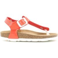 Chaussures Fille Sandales et Nu-pieds Grunland SB0031 Orange
