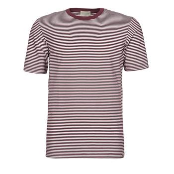 Vêtements Homme T-shirts manches courtes Scotch & Soda 160847 Rouge / Blanc
