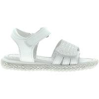 Chaussures Fille Sandales et Nu-pieds Primigi 1431311 Blanc