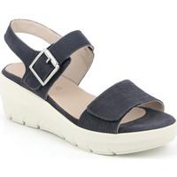 Chaussures Femme Sandales et Nu-pieds Grunland SA1881 Bleu