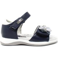 Chaussures Fille Sandales et Nu-pieds Miss Sixty S19-SMS570 Bleu