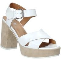 Chaussures Femme Sandales et Nu-pieds Janet Sport 43883 Blanc
