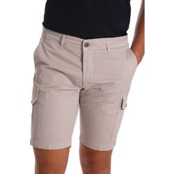 Vêtements Homme Shorts / Bermudas Sei3sei PZV130 7148 Beige