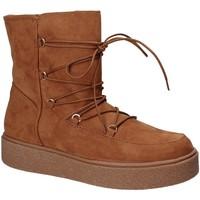 Chaussures Femme Bottines Fornarina PI18TA1138T067 Marron