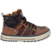 Chaussures Enfant Randonnée Wrangler WJ17216 Marron