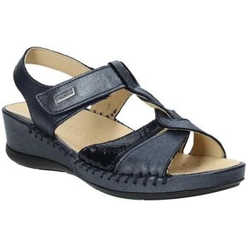 Chaussures Femme Sandales et Nu-pieds Susimoda 2379-03 Bleu