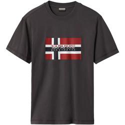 Vêtements Homme T-shirts manches courtes Napapijri NP0A4E38 Gris