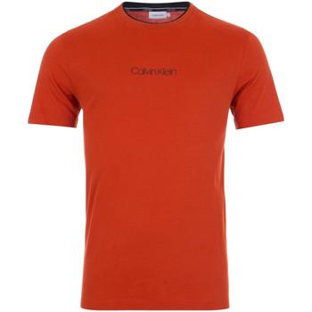 Vêtements Homme T-shirts manches courtes Calvin Klein Jeans K10K104934 Rouge