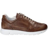 Chaussures Homme Baskets basses Exton 332 Marron