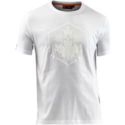 Vêtements Homme T-shirts manches courtes Lumberjack CM60343 005 514 Blanc