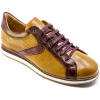 Chaussures Homme Baskets basses Exton 831 Marron