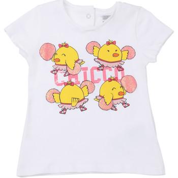 Vêtements Enfant T-shirts manches courtes Chicco 09006955000000 Blanc