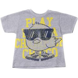 Vêtements Enfant T-shirts manches courtes Chicco 09006918000000 Gris
