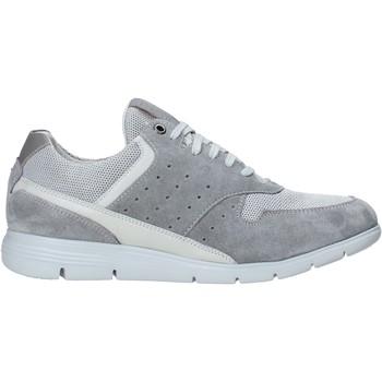 Chaussures Homme Baskets basses Impronte IM01000A Gris
