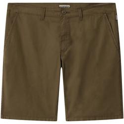 Vêtements Homme Shorts / Bermudas Napapijri NP0A4E1L Vert