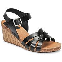 Chaussures Femme Sandales et Nu-pieds Kickers SOLYNIA Noir