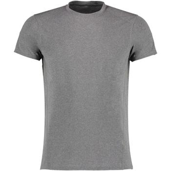 Vêtements Homme T-shirts manches courtes Gamegear KK939 Gris
