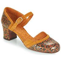 Chaussures Femme Escarpins Chie Mihara TROMPETA Marron
