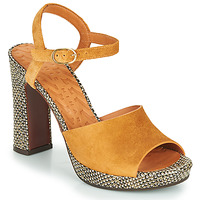 Chaussures Femme Sandales et Nu-pieds Chie Mihara CASSETTE Marron