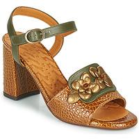 Chaussures Femme Sandales et Nu-pieds Chie Mihara FADIMA Marron