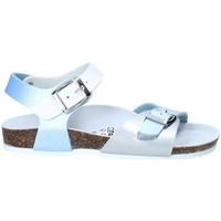 Chaussures Enfant Sandales et Nu-pieds Gold Star 8846D Bleu