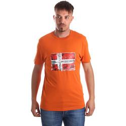 Vêtements Homme T-shirts manches courtes Napapijri N0YIJ4 Orange