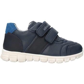 Chaussures Enfant Baskets basses Nero Giardini A823300M Bleu