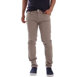 Vêtements Homme Chinos / Carrots Sei3sei PZV17 7148 Beige