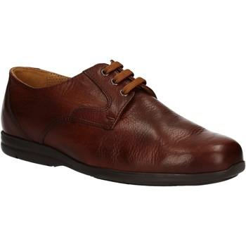 Chaussures Homme Derbies Fontana 5685-VI Marron