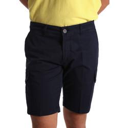Vêtements Homme Shorts / Bermudas Sei3sei PZV130 7148 Bleu