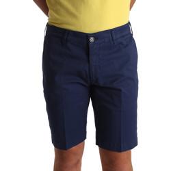 Vêtements Homme Shorts / Bermudas Sei3sei PZV132 71336 Bleu