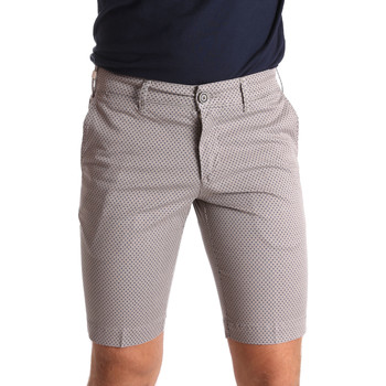 Vêtements Homme Shorts / Bermudas Sei3sei PZV132 71336 Marron