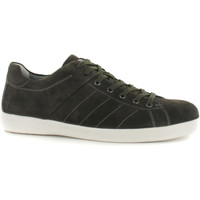Chaussures Homme Baskets basses Stonefly 108541 Vert