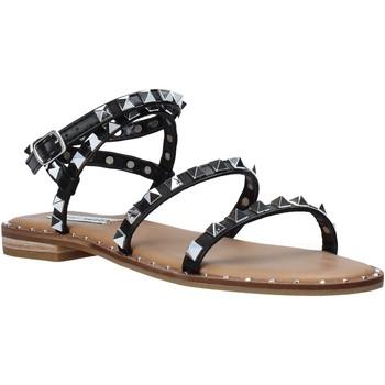 Chaussures Femme Sandales et Nu-pieds Steve Madden SMSTRAVEL-BLK Noir