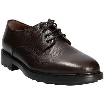 Chaussures Homme Derbies Maritan G 111333 Marron