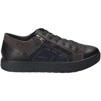 Chaussures Homme Baskets basses IgI&CO 2131200 Noir