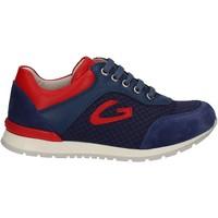 Chaussures Enfant Baskets basses Alberto Guardiani GK23301 Bleu