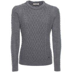 Vêtements Homme Pulls NeroGiardini A774090U Gris