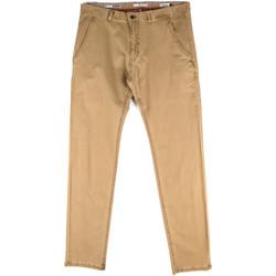 Vêtements Homme Chinos / Carrots Gaudi 811FU25033 Beige