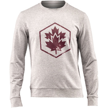 Vêtements Homme Sweats Lumberjack CM60142 001 502 Gris