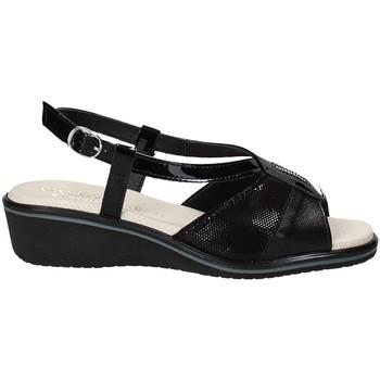 Chaussures Femme Sandales et Nu-pieds Susimoda 270414-01 Noir