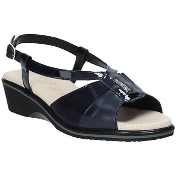 Chaussures Femme Sandales et Nu-pieds Susimoda 270414-01 Bleu