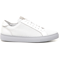 Chaussures Homme Baskets basses Stonefly 211289 Blanc
